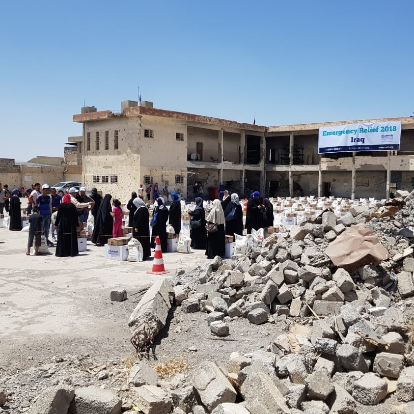 Relief in Destroyed Mosul