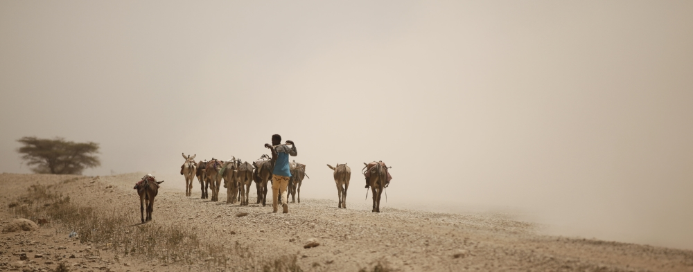 Drought in Afar Ethiopia