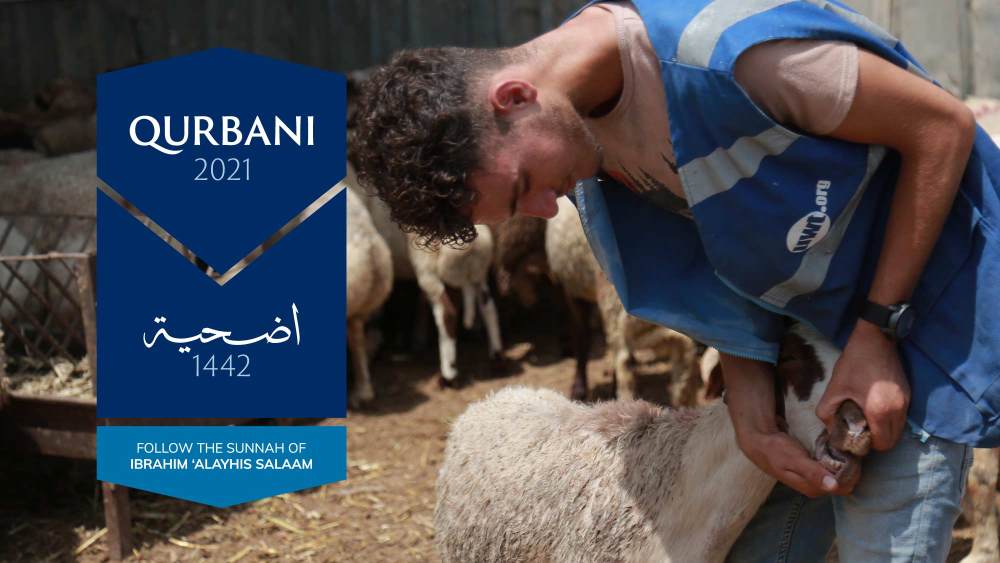 Qurbani 2021 Follow the Sunnah